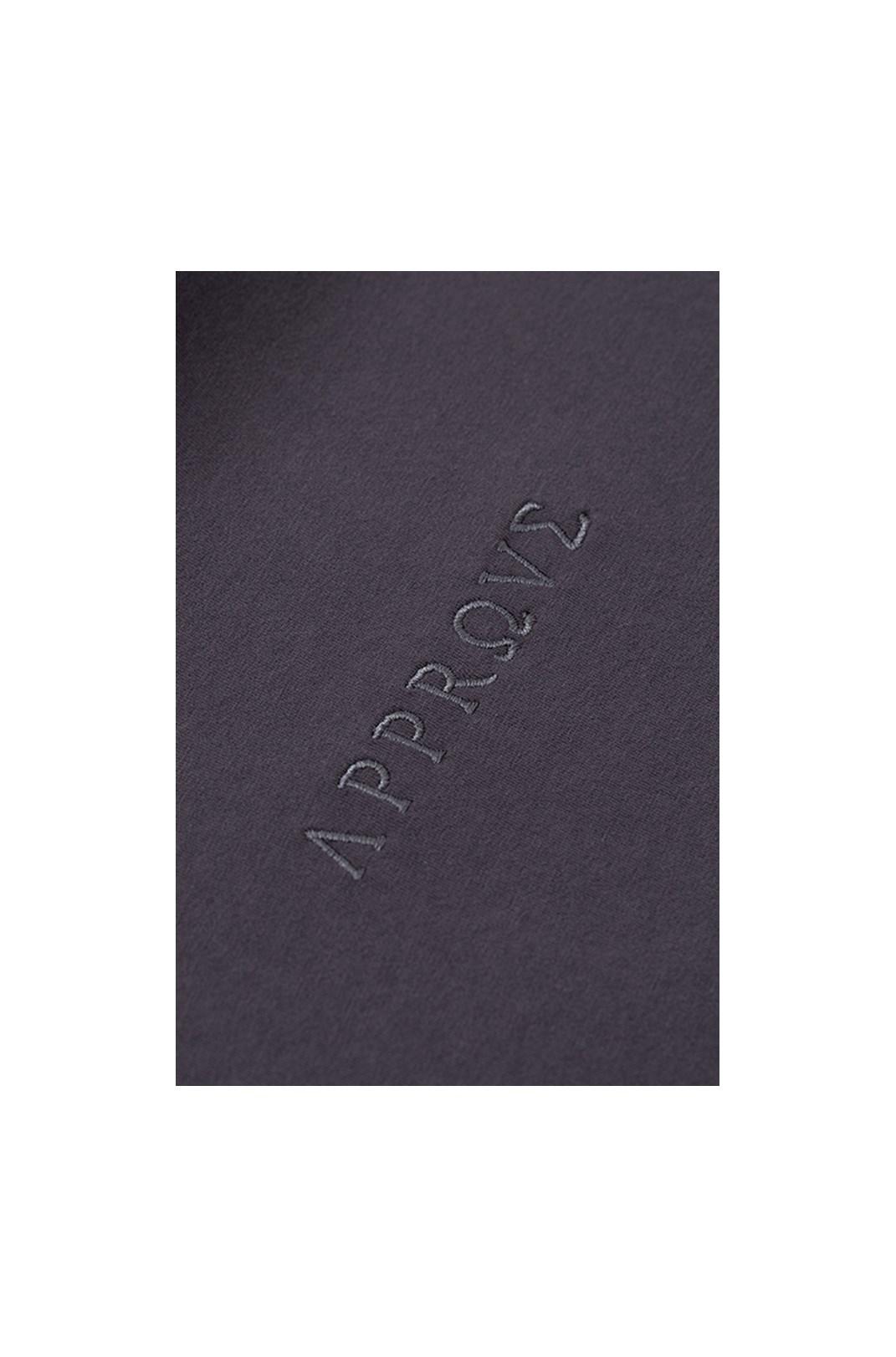 Camiseta Regular Approve Ruínas II Cinza Asfalto