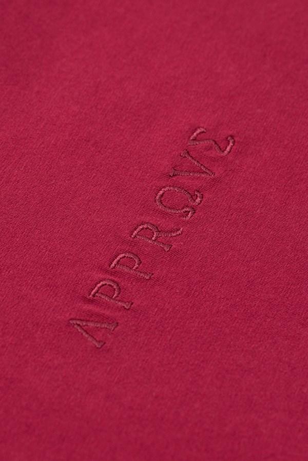 Camiseta Regular Approve Ruínas II Vinho